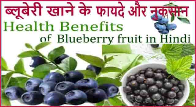 ब्लूबेरी फल खाने के फायदे - Blueberry Fruit HEALTH Benefits And Side Effects In Hindi.