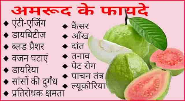 अमरूद खाने के फायदे। Amrood Fruit HEALTH Benefits And Side Effects In Hindi.
